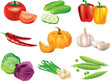 vegetables photo-realistic vector set
