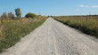 Unpaved road. View of rural road in Ontario, Canada.