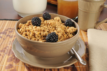 Granola cereal with blackberries