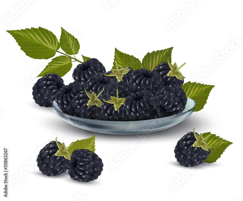 Fresh blackberries with leaves in glass bowl Vector illustration