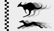 Animal champion sport