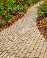 fern brick path