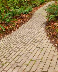 fern brick path