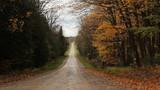 Autumn road. Falling leaves. Ontario.
