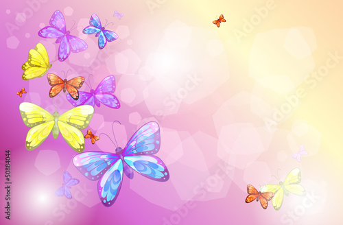 Poster Vlinders A stationery with colorful butterflies