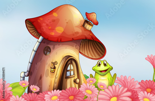 Fotobehang Magische wereld A frog near the mushroom house with a garden of flowers