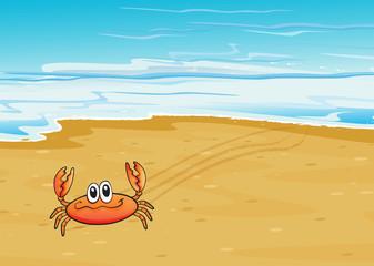 A crab crawling at the seashore