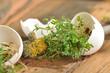 Kresse und Eierschale