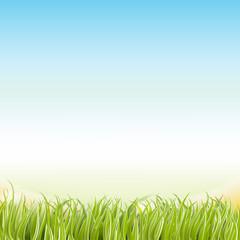 Frühling vektor Hintergrund