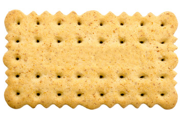 Tea Biscuit Isolated