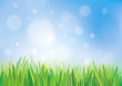Vector of spring background, blue sky and green grass.