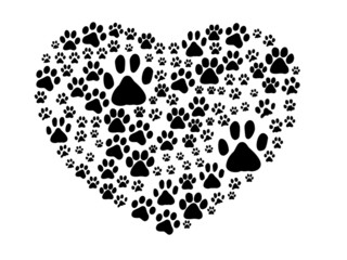 Dog Paws Trails Pawprints Heart White, Black