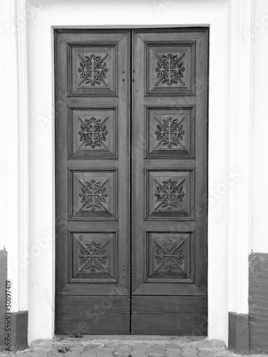 Old wooden door color image