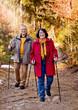 Senioren beim Waldspaziergang / walking 1