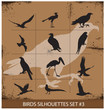 Birds  silhouettes vector symbols black color
