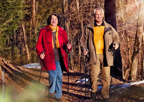 Senioren beim spazieren im Wald / walking 3