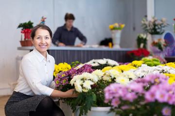 mature woman chooses chrysanthemum