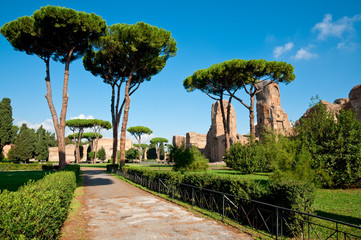 Path and trees from Caracalla springs at Rome