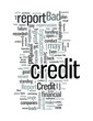 Bad Credit Report and its Implications