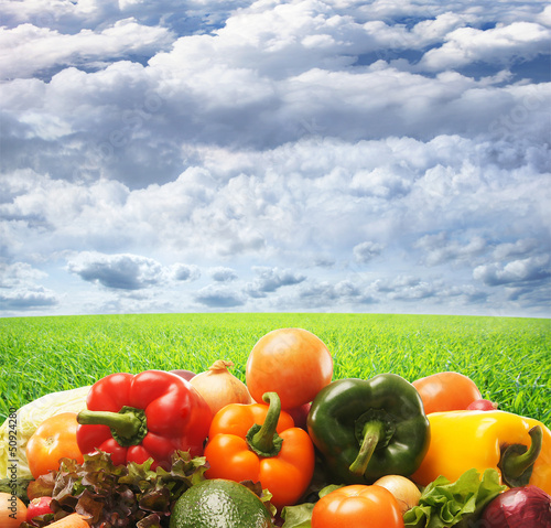 A huge pile of fresh vegetables on a sky and grass background