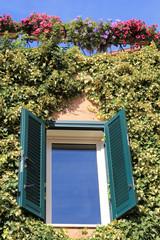 Deliziosa finestra di una casetta di campagna