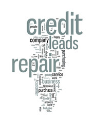 Exclusive Credit Repair Leads