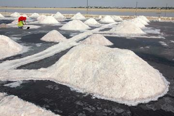 salt mining in India