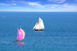 Sailing Regatta in the Cancale Bay.