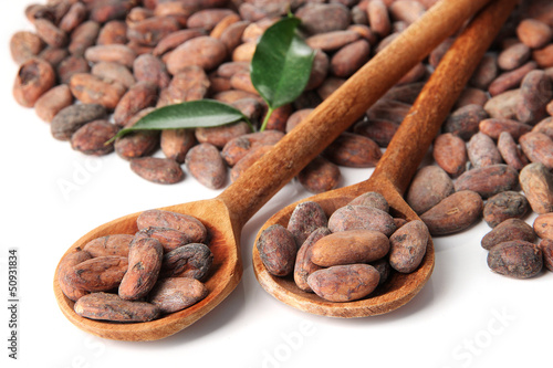 Cocoa beans in wooden spoons with leaves, isolated on white