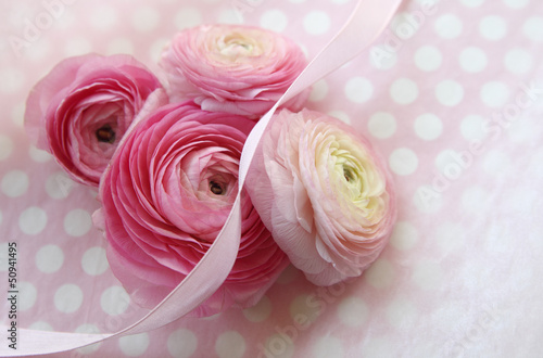 pink ranunculus flowers on polka dots