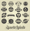 Vector Set: Mixed Sport Labels and Icons