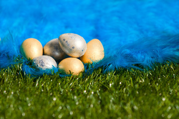 easter eggs on the grass and plumelet