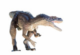Restoration of a Herrerasaurus dinosaur isolated
