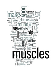 Know Your Muscles The Lower Body
