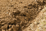 closeup freshly plowed agricultural field soil