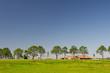 Dutch landscape with farmhouse