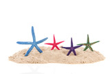 Starfishes at the beach