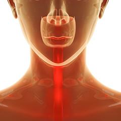 Halsschmerzen - 3D Render