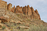 The Palisade Cliffs Clarno Formation of the John Day Fossil Beds