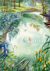 Calm pond scene