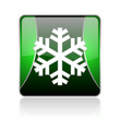 snowflake black and green square web glossy icon