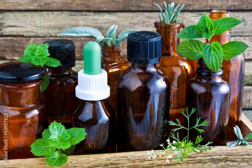 Leinwanddruck Bild Kräuter und Öle