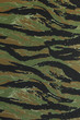 US vietnam green tigerstripe camouflage fabric texture backgroun