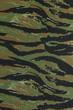 US vietnam green tigerstripe camouflage fabric texture backgroun