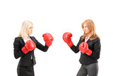 Businesswomen with boxing gloves having a fight