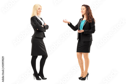 Full length portrait of a young professional women having a conv