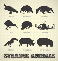 Vector Set: Strange and Odd Animal Silhouettes