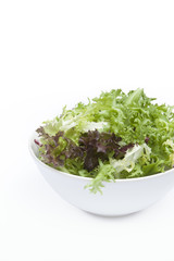 Fresh salad leaves Lettuces. Spring mix. Eat fresh