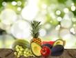 Alimentos Biológicos