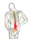 3d rendered illustration of a man having backache